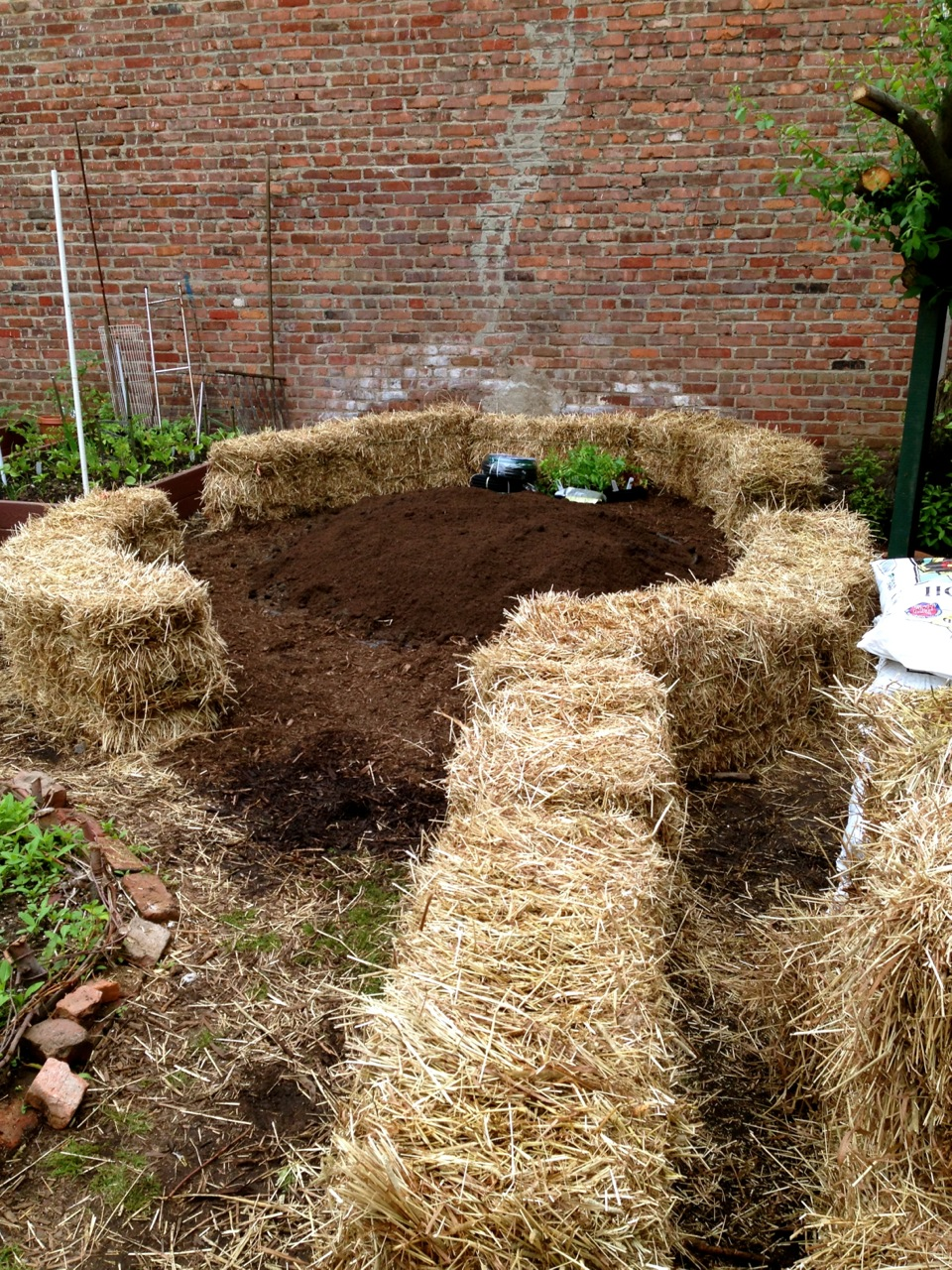 Straw Bale Gardening The Biodegradable Alternative To