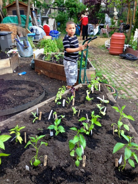 Support A Community Gardens District In New York City 39 S Historic East Village Lower East Side